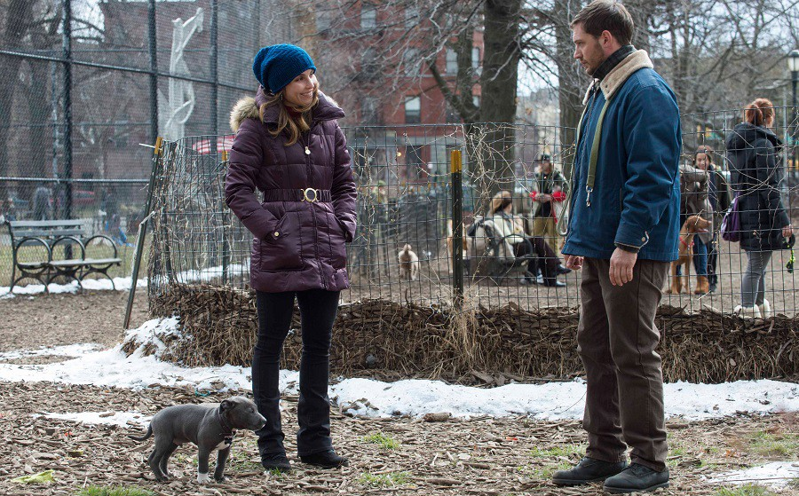 Noomi-Rapace-Tom-Hardy-und-Pit-Bull-Rocco-in-THE-DROP[1]